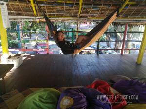hammock the circle hostel