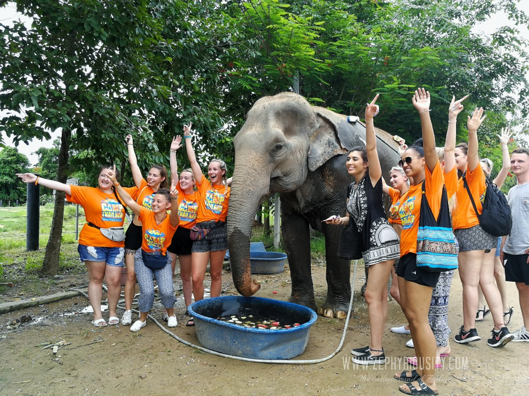 english tour at wildlife friends foundation thailand june 2018
