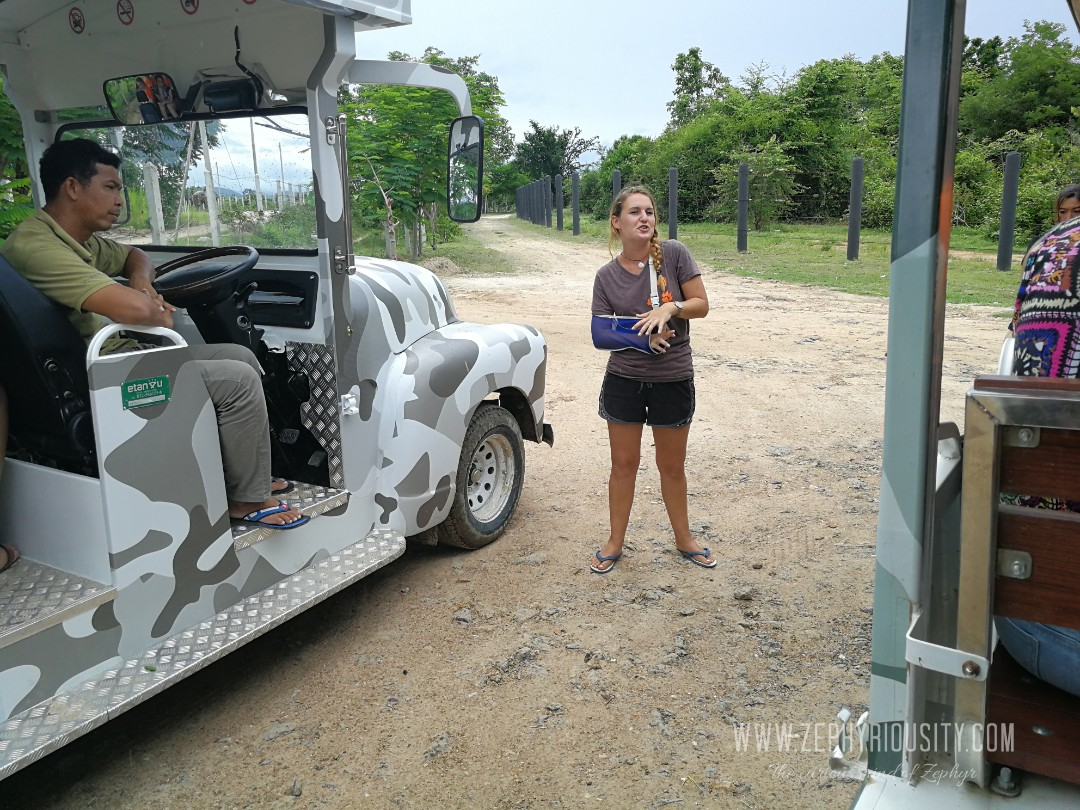 tour guide at wildlife friends foundation thailand