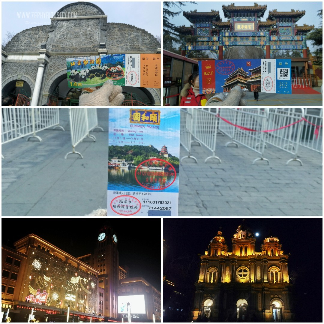 6th day at the beijing zoo, lama temple, forbidden city, Wangfujing District